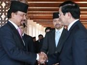 Truong Tân Sang s'entretient avec le sultan du Brunei