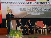 Truong Tân Sang continue ses activités au Bruneï