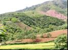 L'Asie du Sud-Est s'oriente vers la durabilité des agro-écosystèmes
