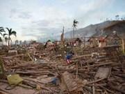 L'ASEAN assiste les sinistrés du typhon Bopha aux Philippines