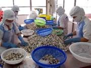 Aquaculture, la coopération danoise qui donne la pêche