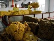 Le Vietnam, 3e exportateur mondial de caoutchouc