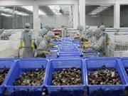 Plainte anti-subvention contre les crevettes du Vietnam: une concurrence déloyale