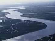 Le delta du Mékong espère se protéger des eaux