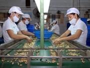 Hausse des exportations de produits agro-sylvicoles et aquatiques