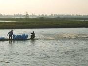 Plus de superficies pour l'aquiculture dans le delta du Mékong