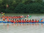 Régate traditionnelle à Phú Yên, comme si vous y étiez