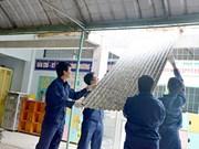 Toiture en briques de lait pour une école maternelle