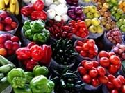 Vietnam et Pays-Bas scèllent une coopération dans l'agriculture