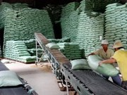Vietnam - Inde : le commerce bilatéral en hausse