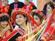 Célébration de la Journée de la culture des ethnies du Vietnam