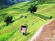 Les provinces du Tay Bac promeuvent le tourisme