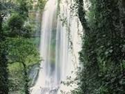 Dam'bri, légendaire cascade du Tây Nguyên