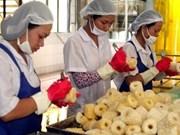 Ninh Thuan: opportunités d'investissement pour les entreprises japonaises