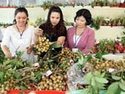 Ouverture de la Foire Mekong Expo 2013 à Cân Tho