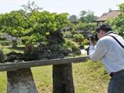 Huê: ouverture de l'Espace des artisans et villages de métier