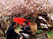Hà Giang : bientôt le marché de l'amour de Khau Vai