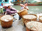 Forum sur l'économie maritime à Hai Phong