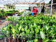 La restructuration agricole cible une hausse de la valeur ajoutée