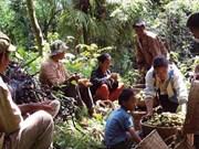La FAO et Slow Food unies pour soutenir les petits agriculteurs