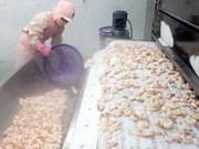 Crevettes : le Japon met fin aux tests sur le trifluralin