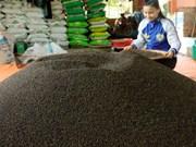 De la nécessité de valoriser le poivre vietnamien par le label