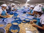 Les exportations de noix de cajou en hausse en 5 mois