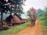 À Dak Lak, le village de Jun en safari au lever du soleil
