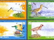 Publication des timbres sur les oiseaux du parc national de Xuan Thuy