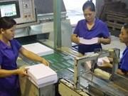 Ouverture de l'exposition Paper Vietnam à Hanoi