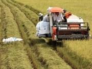 La banque centrale appelée à soutenir plus les paysans