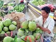 Les produits vietnamiens à la conquête des marchés étrangers