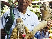 Dinh Hoa, l'homme qui a fait des racines de bambou un art
