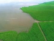 Affaissements de terrain : grand risque à Ca Mau