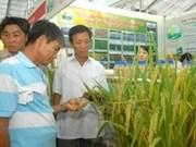Le 6e Congrès national des paysans débutera demain à Hanoi