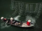 Le delta du Mékong révélé en images emblématiques