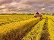 Relier les agriculteurs aux marchés pour produire plus