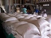 Cambodge: forte hausse des exportations de riz en six mois