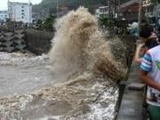 Les touristes vietnamiens bloqués sont arrivés sains et saufs à Xi'an