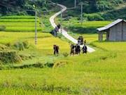 Sa Pa propose un nouveau circuit touristique communautaire
