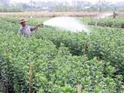 Hanoi : le taux de pauvreté diminue de 1,5 %
