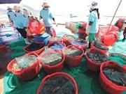 Droits compensateurs sur crevettes : réaction de la Malaisie