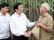 Le président Truong Tan Sang à Cao Bang