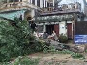 Typhon WUTIP : 5 décès, 2 portés disparus et 50 blessés