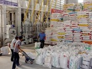 Le Vietnam entend exporter 1,8 million de tonnes de riz au dernier trimestre