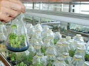 Développement des biotechnologies dans l'agriculture