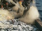 La mer et le développement maritime durable