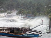 Les habitant du Nord et du Centre se préparent au typhon Haiyan