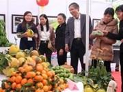 Agroviet 2013: vers une agriculture sûre au développement durable