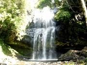 Un nouveau site éco-touristique privé au Tay Nguyen